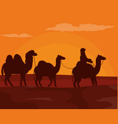 Arab with camels on desert vector