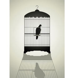 Bird in the cage vector