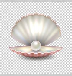 realistic beautiful natural open sea pearl vector image vector image