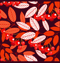 the leaves and berries of mountain ash seamless vector image