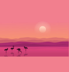 at sunrise lake scene with flamingo silhouettes vector image vector image