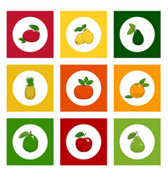 Icons tropical fruits on colored background vector