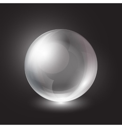 transparent sphere on a black background vector image vector image