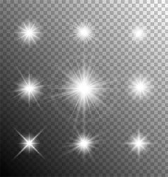Sparkling and shining stars vector