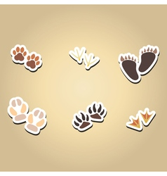 Color icons with traces of animals and birds vector