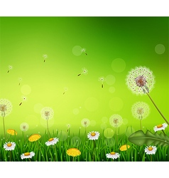Beautiful spring or summer season nature vector