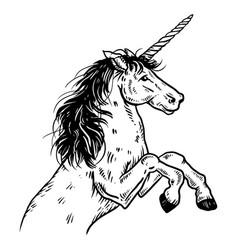 unicorn engraving vector image vector image