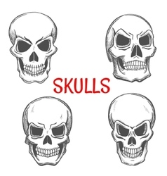 Skulls and skeleton craniums sketch icons vector image