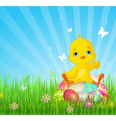 Easter Chick sitting on eggs vector image