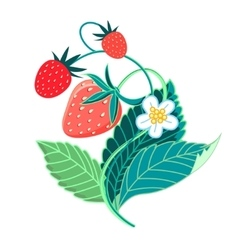 Colorful tasty strawberries vector