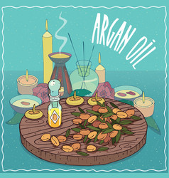 Argan oil used for aromatherapy vector