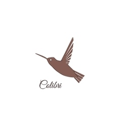 Colibri logo Hummingbird Identity design template vector image