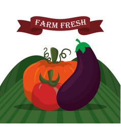 Farm fresh vegetables liifestyle healthy sticker vector