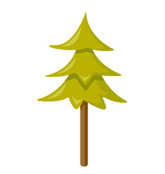 fir tree cartoon vector image
