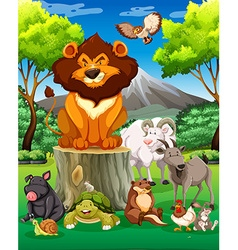 Wild animals together in the field vector image