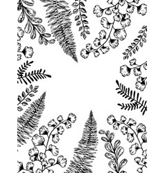 leaves of plants engraving vector image vector image
