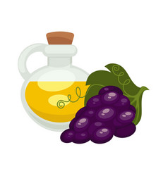 Grape seed oil in bottle flat isolated vector