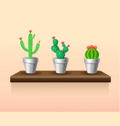 Colorful light houseplants set vector