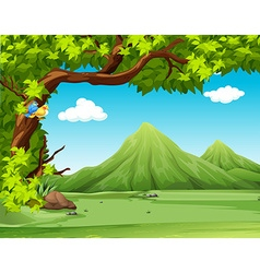 Nature scene with moutains in background vector image