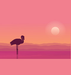 At sunrise flamingo scene silhouettes vector