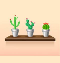 Colorful light houseplants set vector