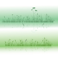 Grass and dragonflies vector