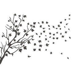 Maples falling background vector