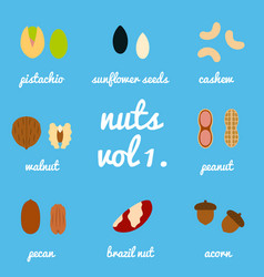Vol 1 nuts and seeds icon set vector