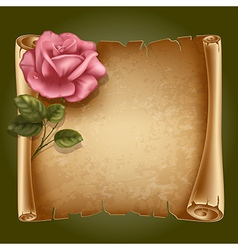 Old paper with rose vector