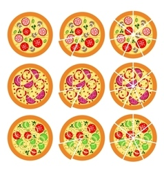 Set of pizza vector