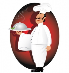 professional chef vector image
