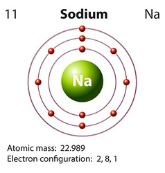 Diagram representation of the element sodium vector