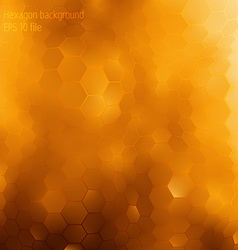 Background about honey and gold concept vector image