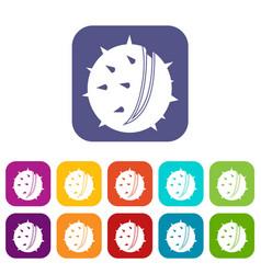 Chestnut icons set flat vector
