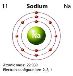 Diagram representation of the element sodium vector