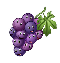 Grape with different face vector