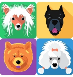 Set dog head icon flat design vector image vector image