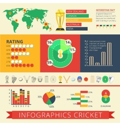 Infographics report cricket poster vector