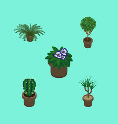 Isometric plant set of houseplant flowerpot vector