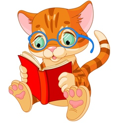 Cute kitten education vector