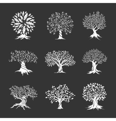 Beautiful oak trees silhouette set vector