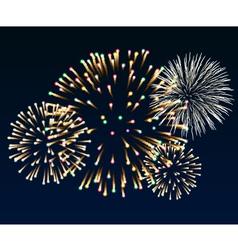Firework vector
