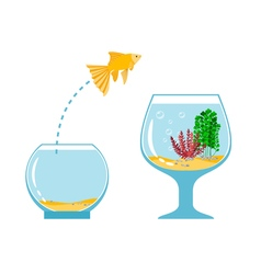 Gold fish jumping escape from fishbowl to other vector