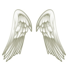 Pair of angel wings vector