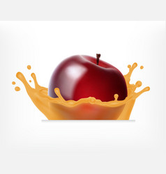 red apple with juice splash vector image vector image