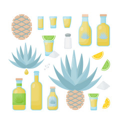 Tequila and blue agave flat icon set vector