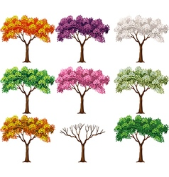 Cartoon of beautiful colorful tree vector
