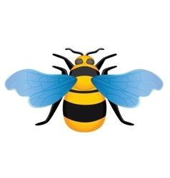 Symmetrical picture bee vector