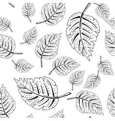 black and white leaf pattern vector image vector image