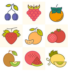 Fuits and berries set of vector